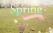 20款春天气息鲜花打折促销海报PSD模板