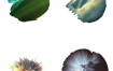 100张高清爆破飞溅喷溅彩色油彩免抠图案PNG格式